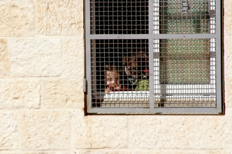 children-gated-window.jpg