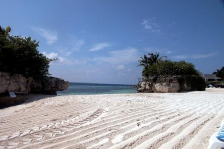 pristine-cebu-beach.jpg