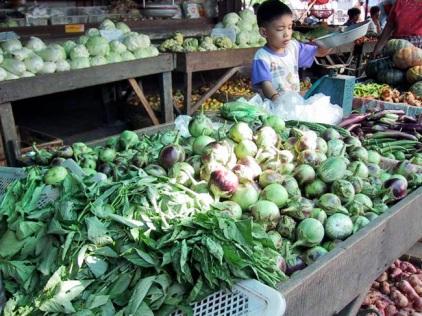 veggies-at-pompom.jpg